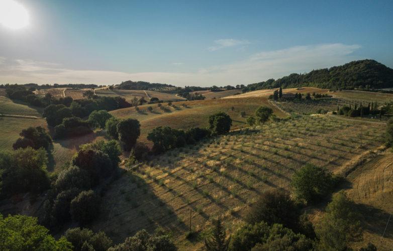 tuscany_country_agriturismosancarlo